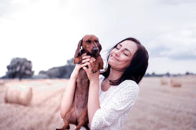 Tener un perro salchicha