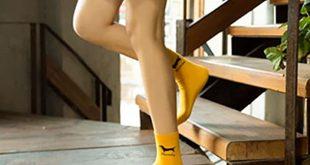calcetines de perros salchicha