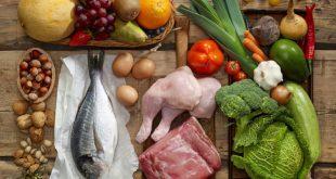comida natural para perros salchicha